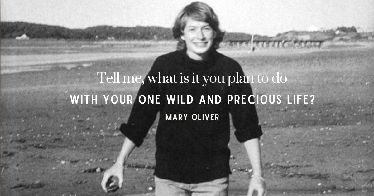 Wild and precious life Mary Oliver