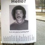 Lionel Richie hello is it me you're looking for