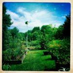 Susan's Birdhouse
