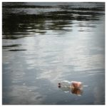 plastic bottle floating on lake litter everyday compassion